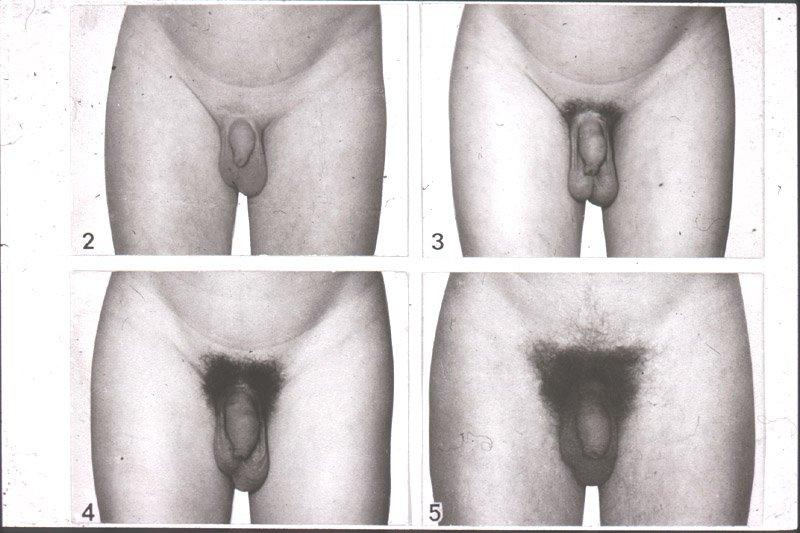 половой член с затруднением входит во влагалище-ке2