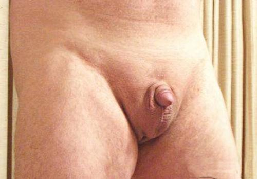 Пенис 2 см