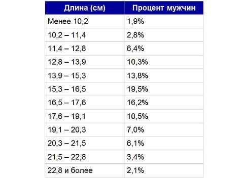 таблица средних размеров пениса
