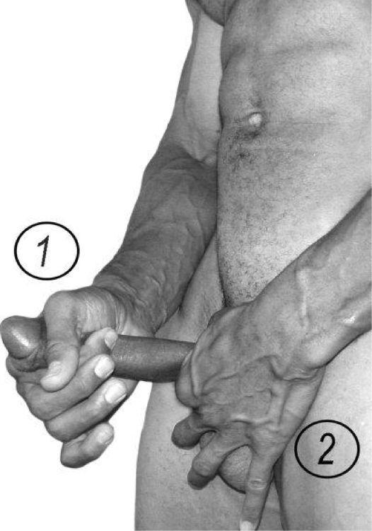 Как увеличить головку пениса - эффективные упражнения