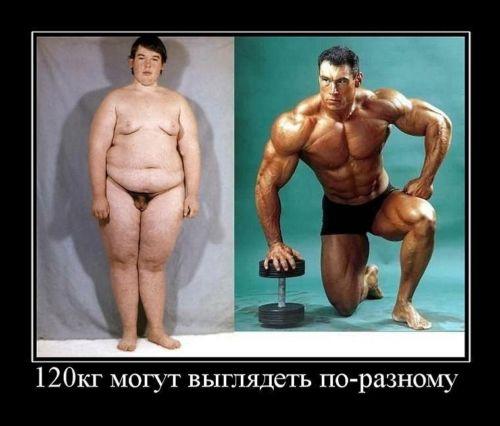 Вес и размер члена