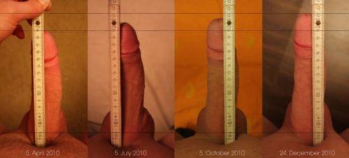 Результат использования крема для увеличения пениса