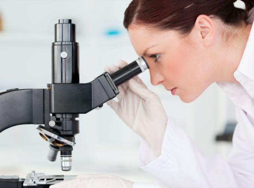 Работа с микроскопом