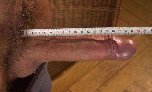 Измерение длины полового члена