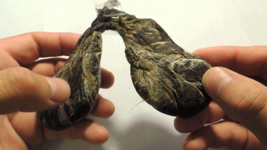Внешний вид бобровой струи