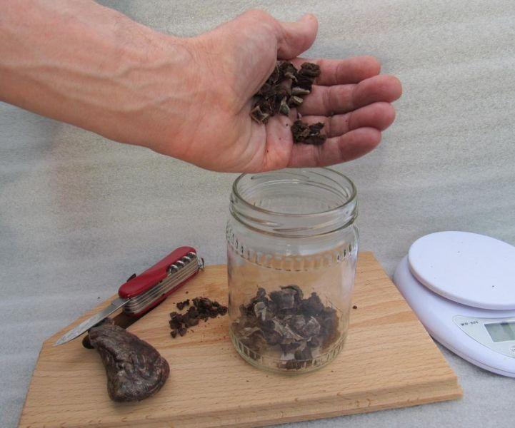 Приготовление настойки бобровой струи